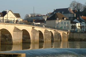 Source de la Saône