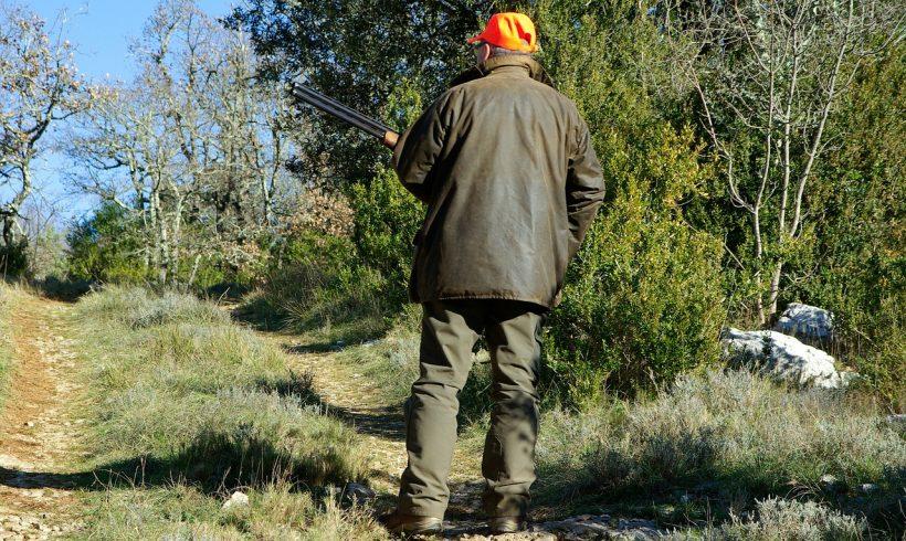 Suspension de la chasse des espèces de gibier d'eau et d'oiseaux de passage dans le département de la Côte-d'Or