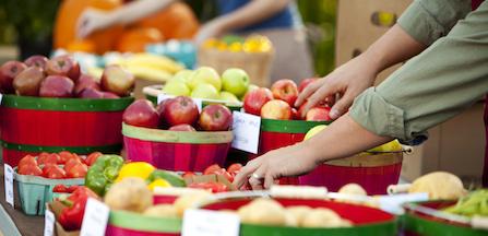 Lettre ouverte sur les états généraux de l'alimentation