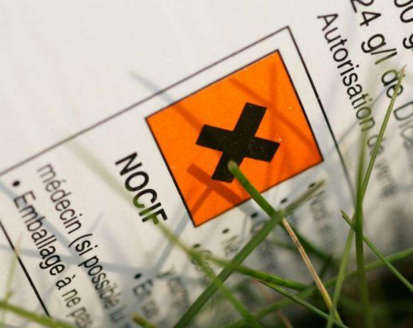 Glyphosate : vous en reprendrez bien pour 5 ans ?