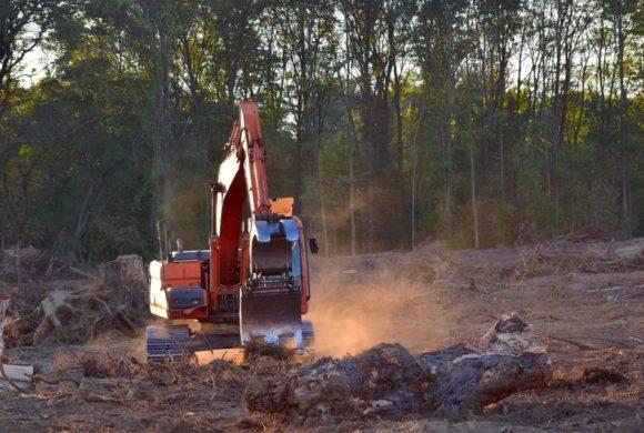 Eurodéputés, ne rasons pas forêts et espaces naturels pour produire de l'énergie