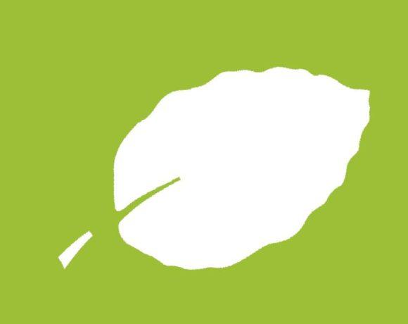 Charte du Parc national des forêts de Champagne et de Bourgogne. Où en sommes-nous ?