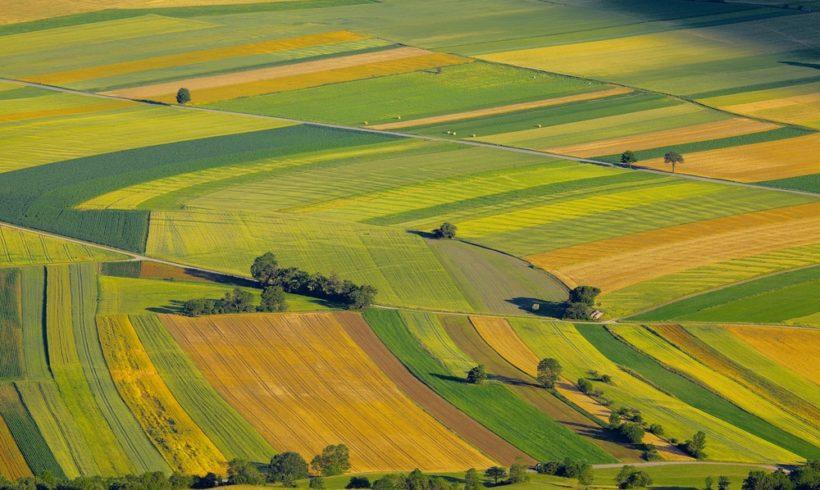 «L'agriculture française face à ses nouveaux défis»