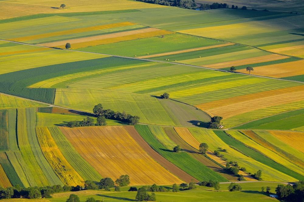 """""""L'agriculture française face à ses nouveaux défis"""""""
