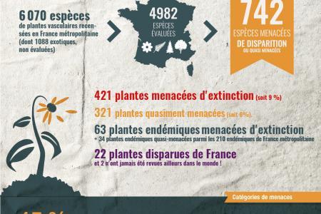Liste rouge : la flore menacée de France métropolitaine, évaluée pour la première fois
