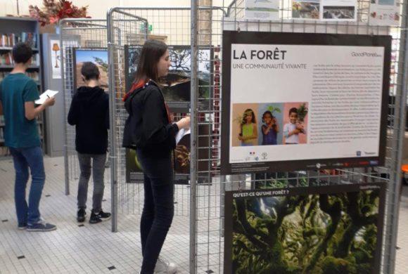 Exposition pour le collège Saint-Michel