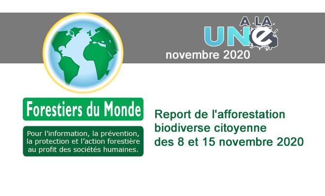 Report de l'afforestation biodiverse citoyenne des 8 et 15 novembre 2020