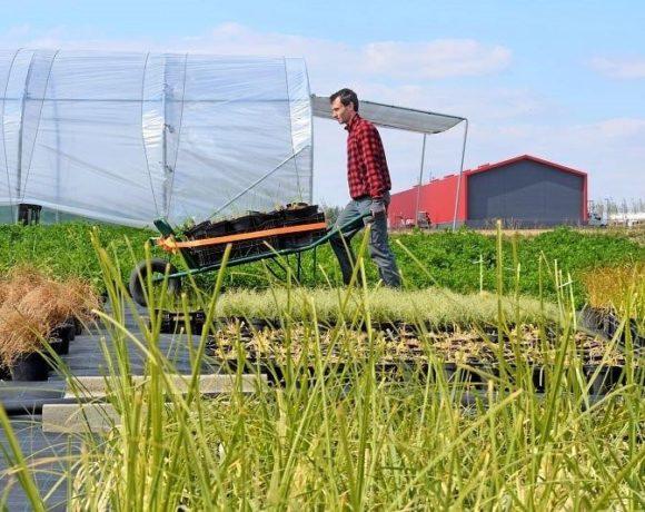 Territoire : Urbanisme et Agriculture, un exemple à suivre